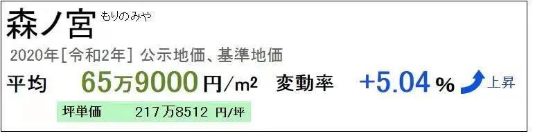 年终巨献!大阪天守阁名邸,12月12日闪耀开盘!(图4)